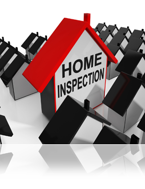 Home Inspectors Help More Than You May Think - Give Your Outdoor Space a Wash & Haircut - Creating a Realistic New Home Budget